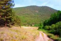 Дорога в падь Ташкиней (южная часть острова Ольхон)